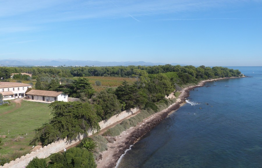 L'Île Saint-Honorat au large de Cannes