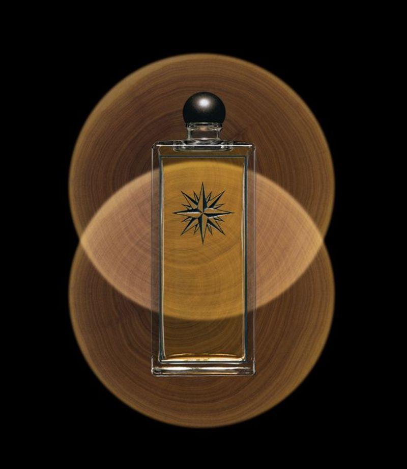Affiche pour le parfum Cèdre de Serge Lutens, pionnier de la parfumerie de niche