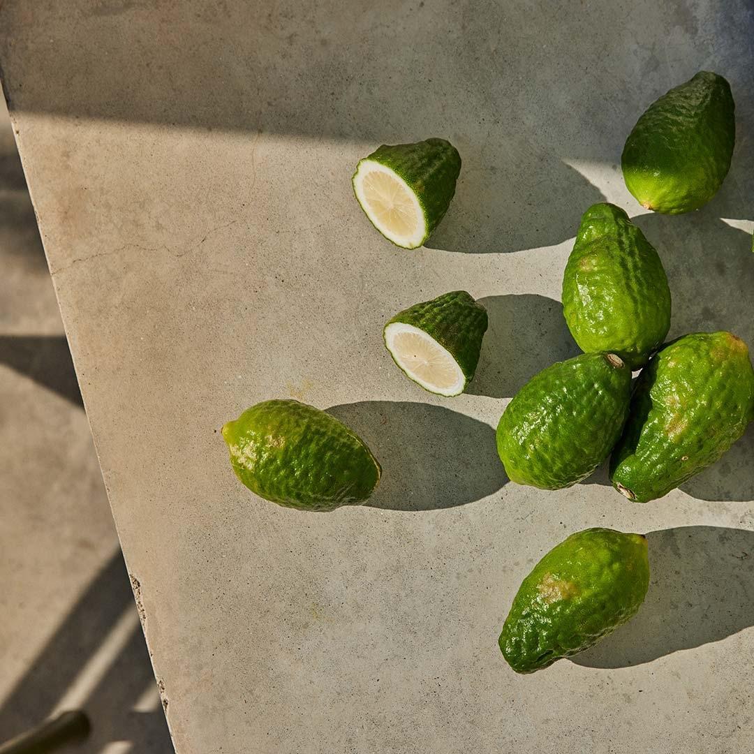 Nouveau Parfum : Rêverie de Bergamote par Miller Harris, y a-t-il du mieux ?