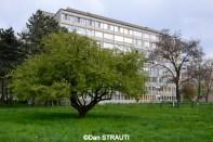 Brasov_copyright_Dan_STRAUTI (2) (Copy)