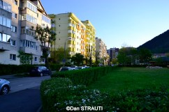 Brasov_copyright_Dan_STRAUTI (20) (Copy)