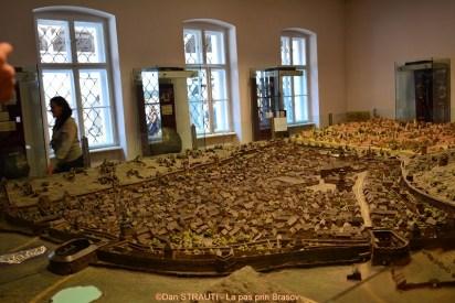 Bastionul Tesatorilor (5)