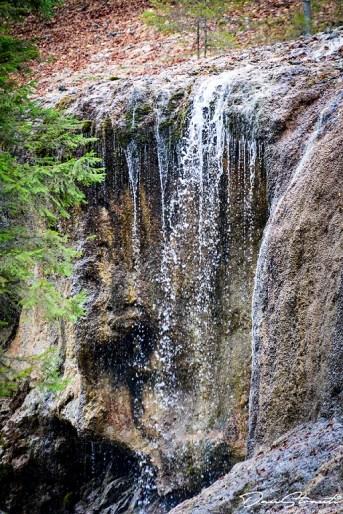 Cascada Urlatoarea (4)