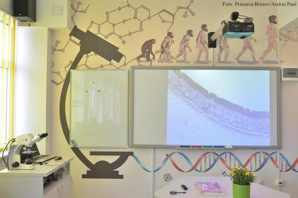 Laborator biologie - Mesota (2)