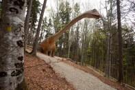 Seismosaurus_DinoParc_1