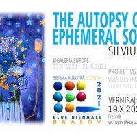 Galeria Europe: Silviu Preda, proiect artistic la Essentia - Bienala Internațională de Arte Vizuale Brașov