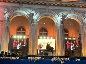 Vioara lui Enescu (2)