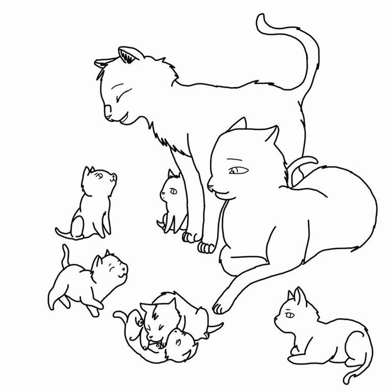 Spay/neuter « Adopt A LAPCAT