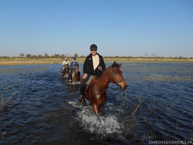 okavango à cheval