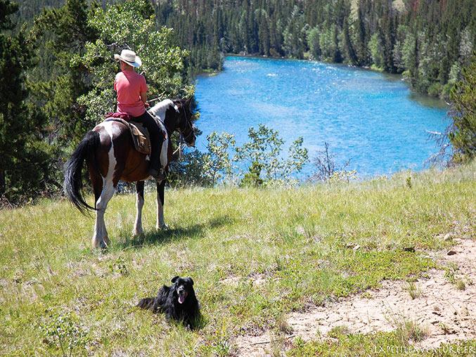 cavalier au lac Chilko