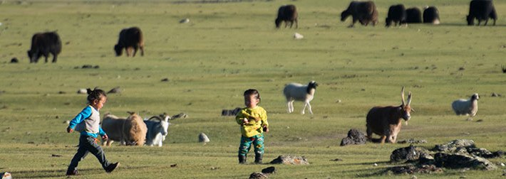 Jeunes nomades en Mongolie