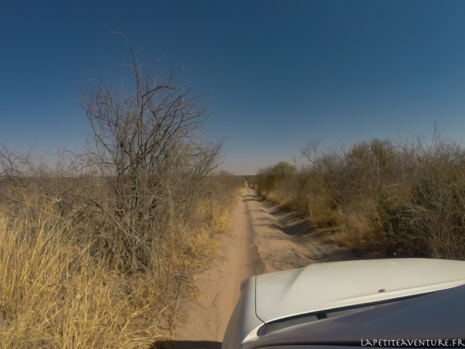 4x4 dans le Kalahari