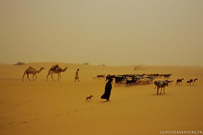 Nomades en Mauritanie
