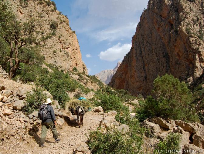 Marche dans le canyon de Taghia