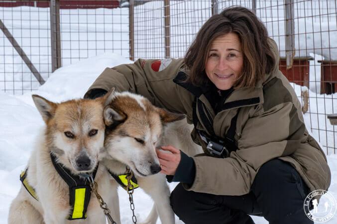 Deux wheel dogs en Laponie suédoise