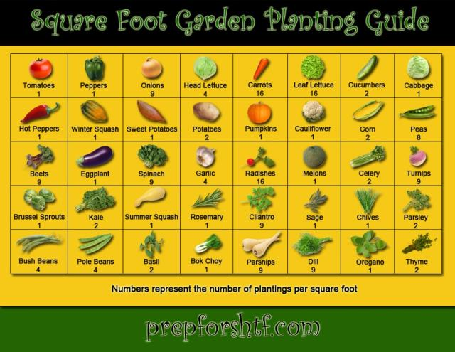 Sqaure_Foot_Planting_Guide_LG