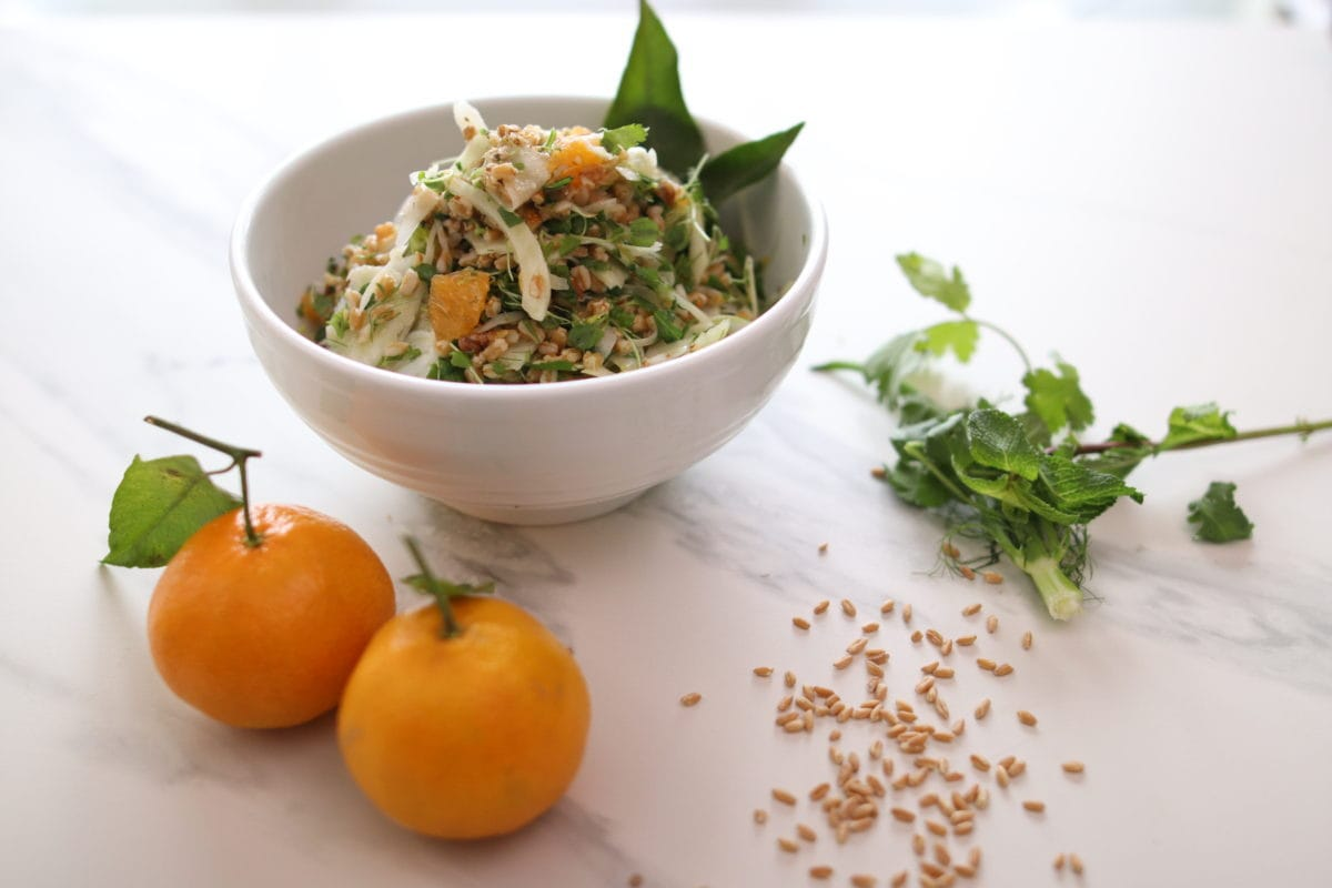 Salade de farro au fenouil et clémentines