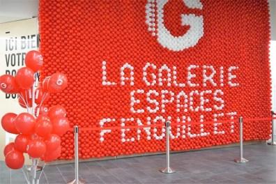 la-galerie-espaces-fenouillet-la-petite-frenchie-6