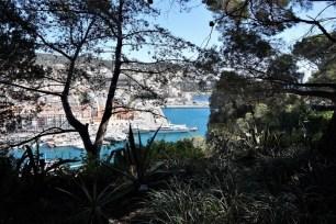 Vue depuis le Parc de la colline du château sur le Port de Nice
