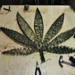 Cannabis Edmonton La Petite Watson