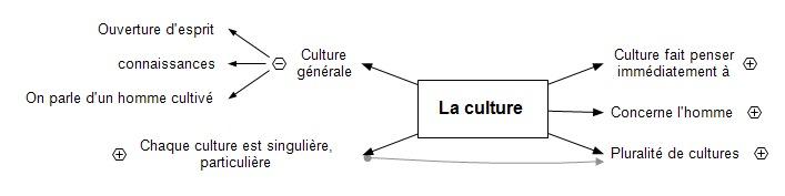 La culture ts4