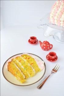 Torta funfetti (3)