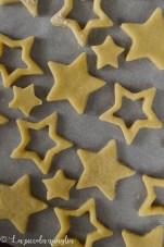 stelle di natale (2)