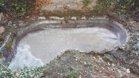bassin-1