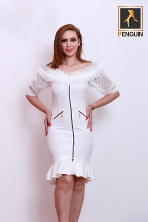 Code_[Mena820]_Short_dress_with_zipper