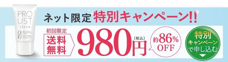 ネット限定特別キャンペーン送料無料980円