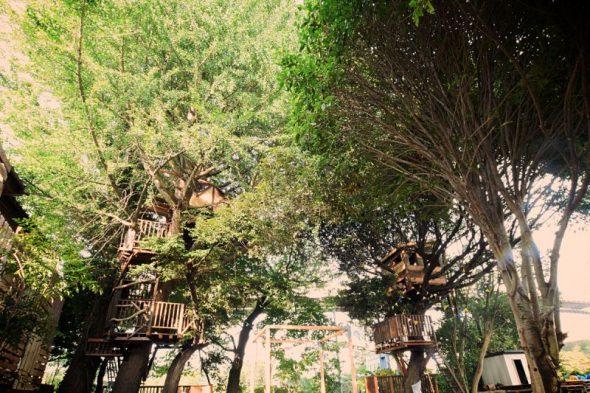 椿森コムナのアクセスと駐車場と混雑状況