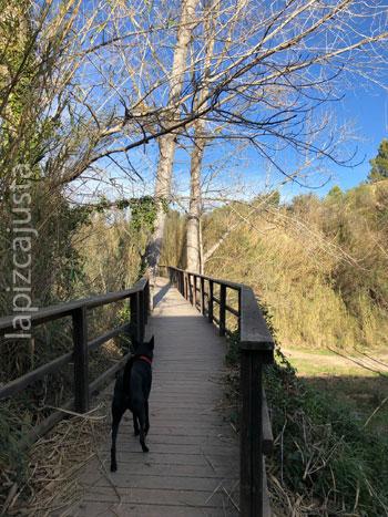 primer puente de la ruta de los Molinos