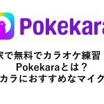 Pokekaraとは?スマホでカラオケアプリ、ポケカラの使い方から、おすすめマイクまで紹介!家でカラオケをしよう!