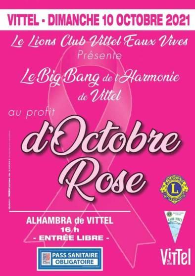 vit rose2