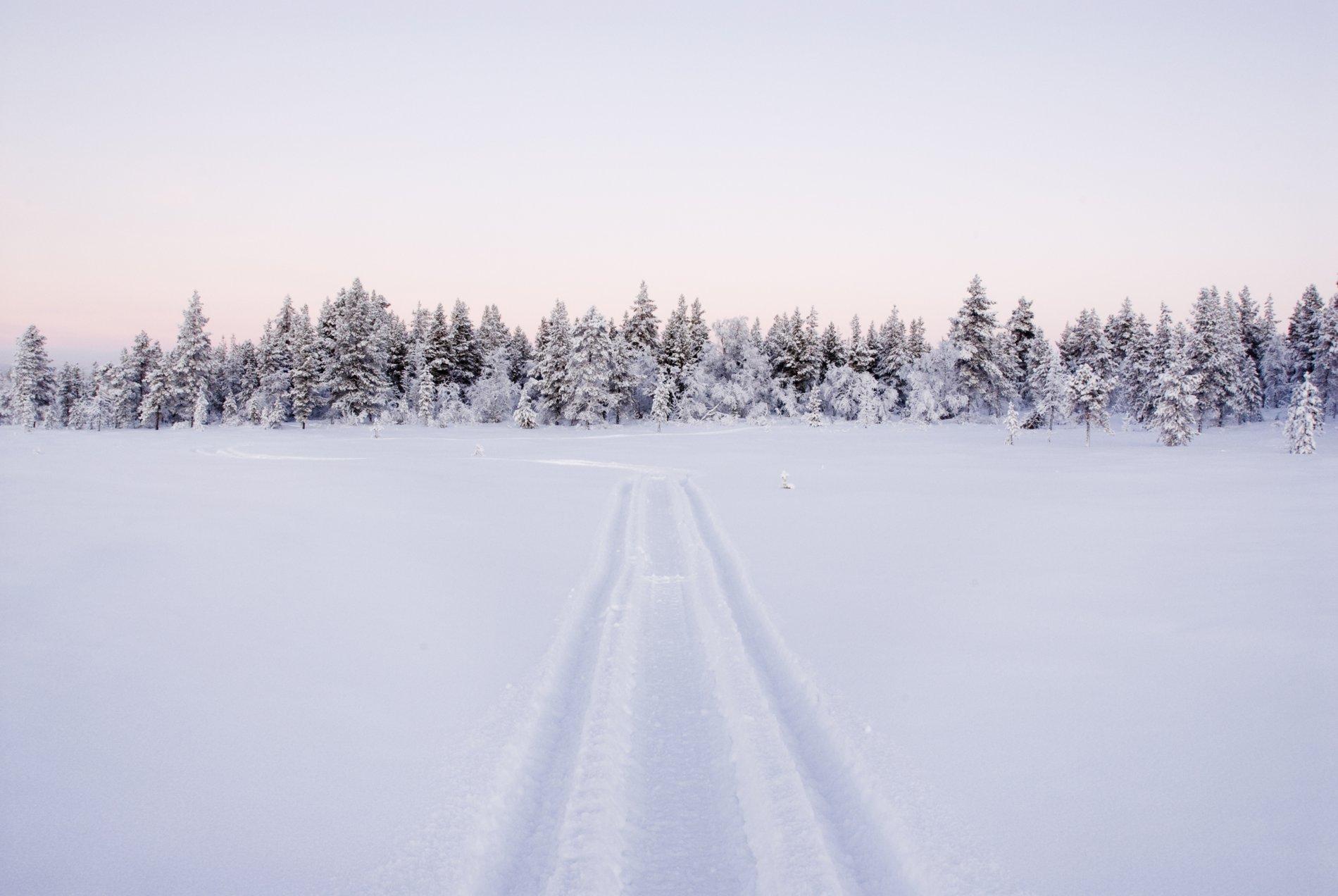 Lapland Snow