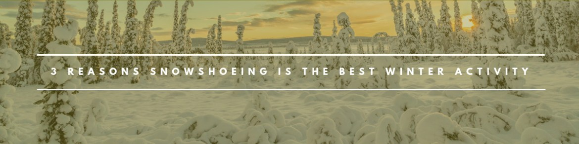 3-reasons-why-snowshoeing-is-the-best-winter-activity