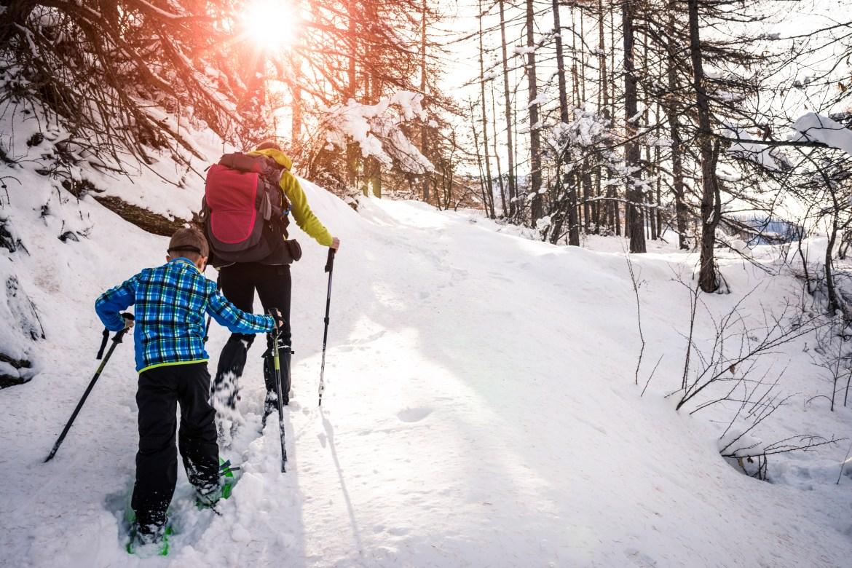 Snowshoe-Lapland