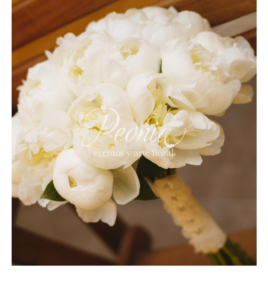 Peonia Eventos y Arte Floral - LaPlanner