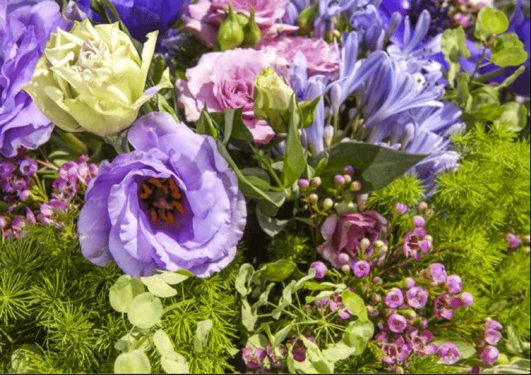 proveedor floral 3