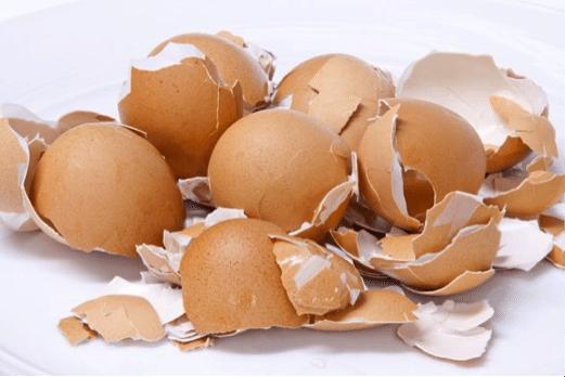 claras de huevo 7