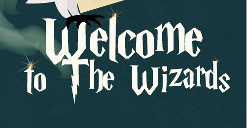 Welcome to the wizards 2019 (photos)