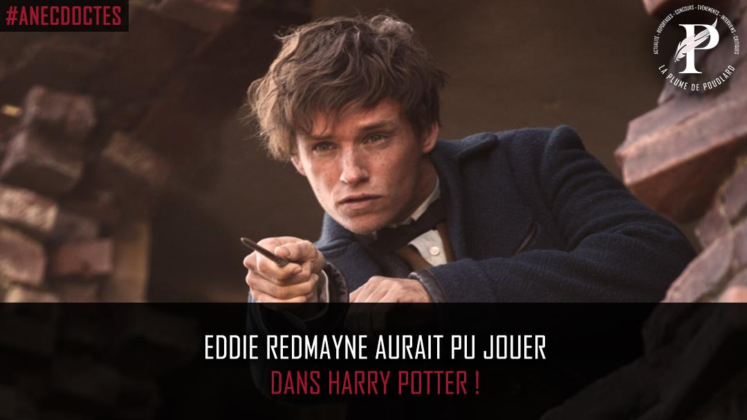 Eddie Redmayne aurait pu jouer dans Harry Potter !