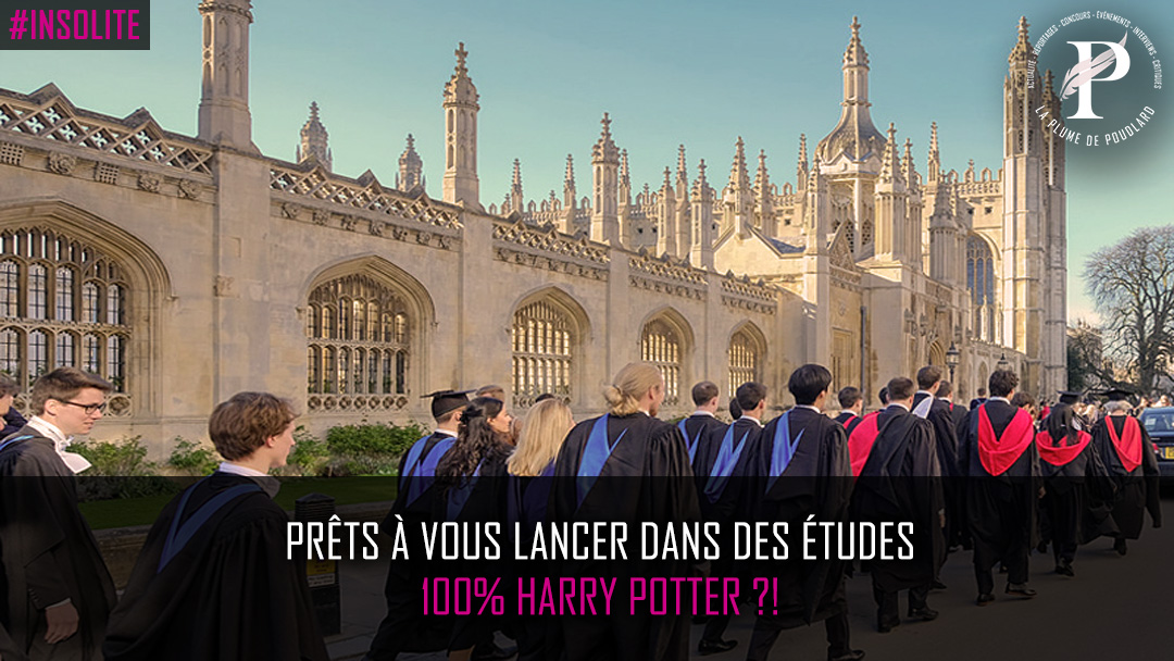 Prêts à vous lancer dans des études 100% Harry Potter ?!