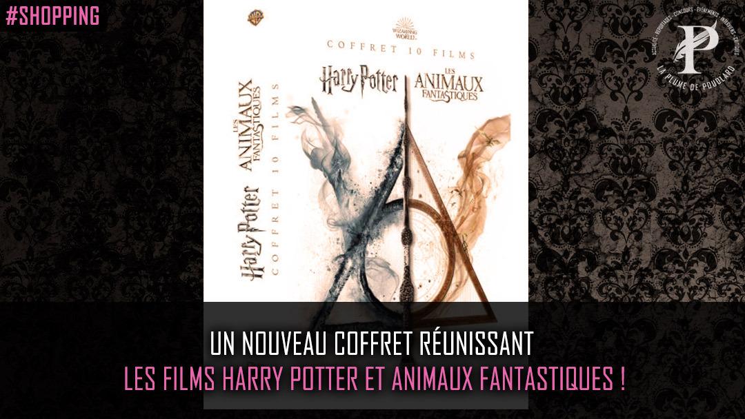 Un nouveau coffret réunissant les films Harry Potter et Animaux Fantastiques !