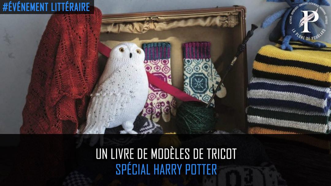 Un livre de modèles de tricot spécial Harry Potter