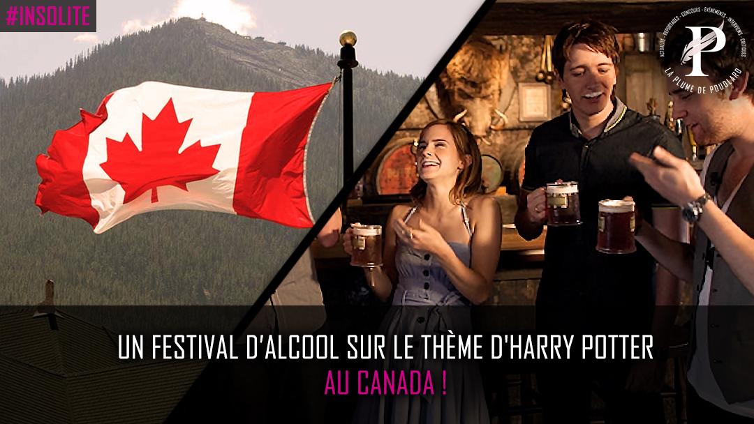 Un festival d'alcool sur le thème d'Harry Potter au Canada !