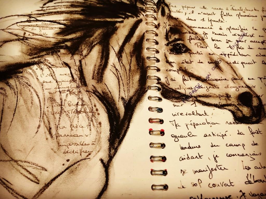 cheval journal créatif