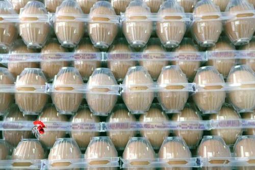 Huevos Morenos entrega a domicilio en Madrid