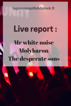 Live report : Mr white noise, Molybaron, The desperate sons !