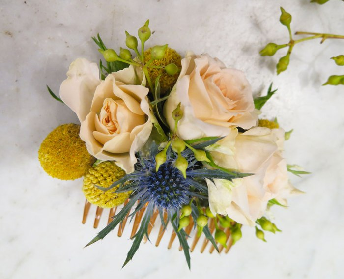 Peigne-fleuri-les-herbes-fauves